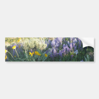 Rocky Mountain Lupine Bumper Sticker