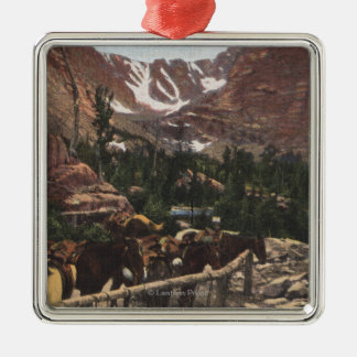 Rocky Mountain National Park, CO Christmas Ornament