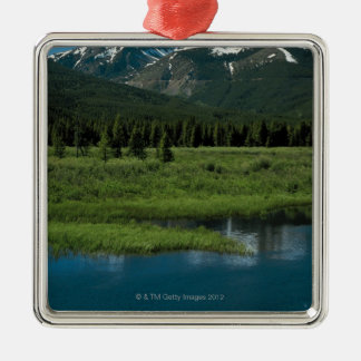 Rocky Mountain National Park , Colorado Christmas Ornament