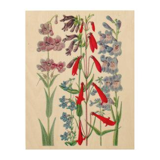Rocky Mountain Wildflowers Botanical Wood Wall Art