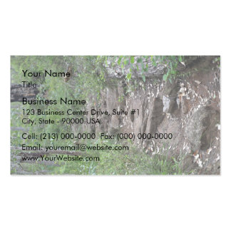 Rocky pathway in forest business card templates