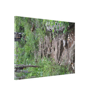 Rocky pathway in forest stretched canvas prints