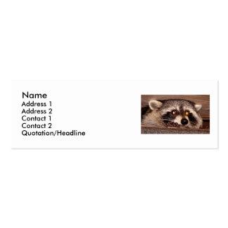 Rocky Raccoon Business Card Templates