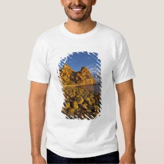 Rocky shoreline on Isla Carmen in the Gulf of Tee Shirt