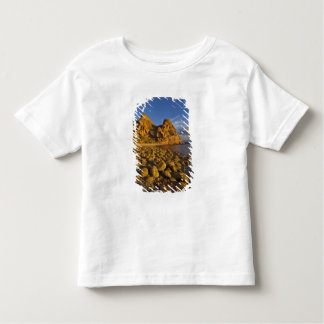 Rocky shoreline on Isla Carmen in the Gulf of Toddler T-Shirt