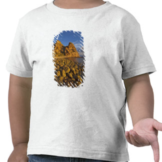 Rocky shoreline on Isla Carmen in the Gulf of T-shirts