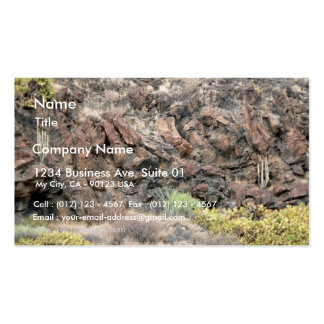 Rocky Steep Business Cards