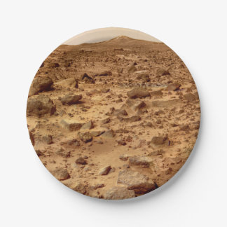 Rocky Surface of Planet Mars Paper Plate