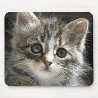 Rocky the Kitten Mousepad