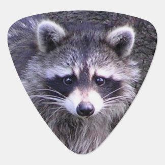 Rocky the Raccoon Guitar Pick