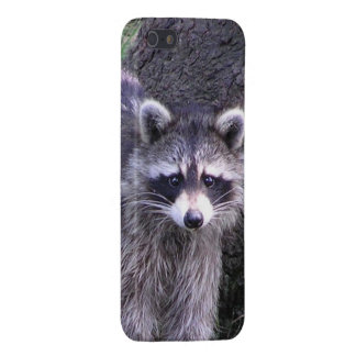 Rocky the Raccoon iPhone 5 Cover