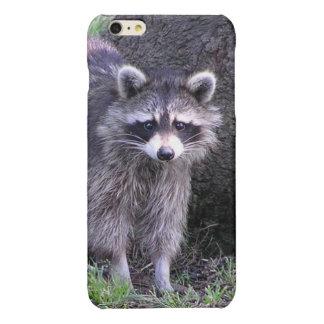 Rocky the Raccoon iPhone 6 Plus Case