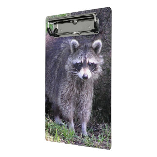 Rocky the Raccoon Mini Clipboard