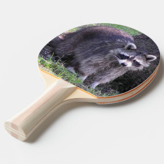 Rocky the Raccoon Ping Pong Paddle