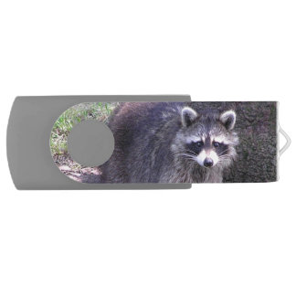 Rocky the Raccoon USB Flash Drive