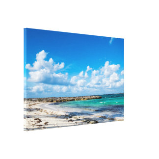 Rocky Tropical Beach&Ocean Canvas Print