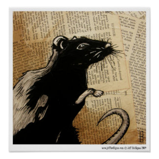 Rodent Poster