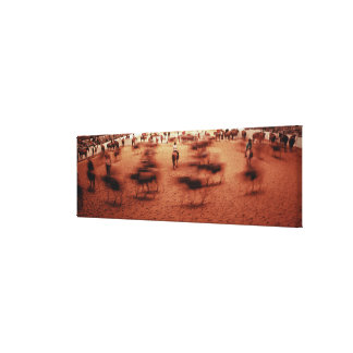 Rodeo arena,blurred motion,Texas, USA Canvas Print