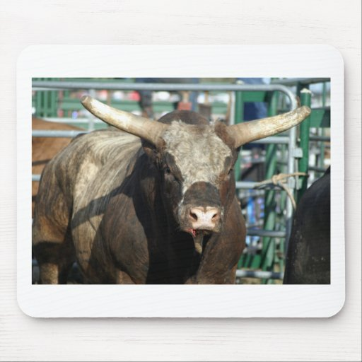 Rodeo Bull Mouse Pad