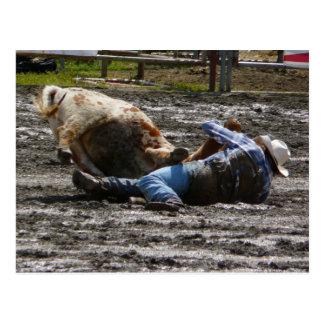 Rodeo Cowboy Steer Wrestling Post Cards