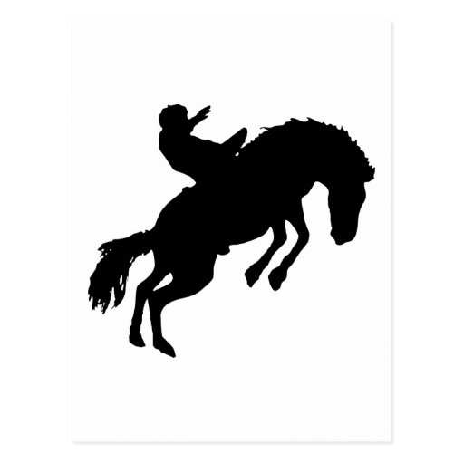 Rodeoreiter rodeo post cards