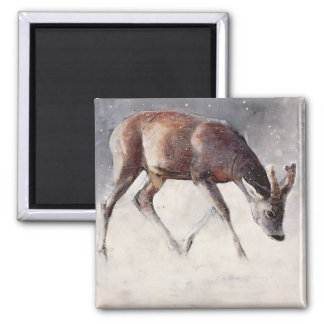 Roe Buck Winter 2000 Magnet