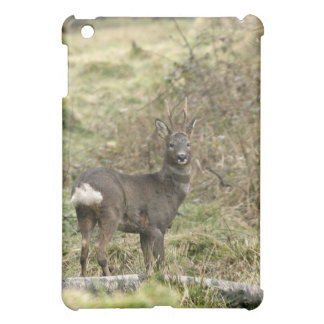 Roe Deer Buck iPad Case