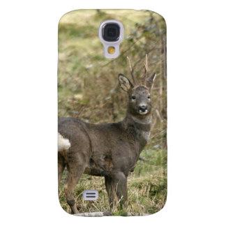 Roe Deer on the Moors iPhone 3 Case