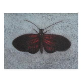 roed trope sommerfugl postcard