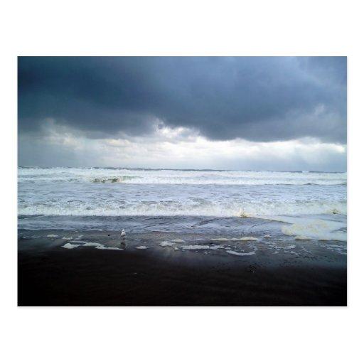 Roiling Sea at Agate Beach Oregon Postcard