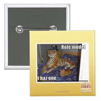 Role Model, I haz one 15 Cm Square Badge