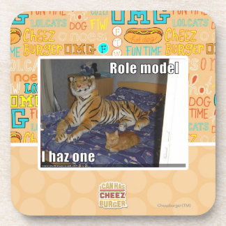 Role Model, I haz one Drink Coasters