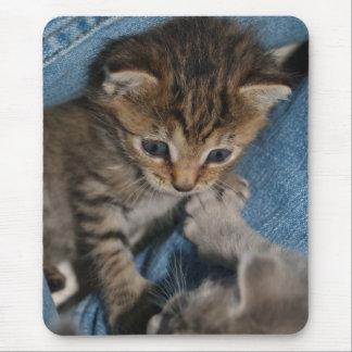 Rollicking Kitten Mousepad