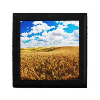 Rolling hills of ripe wheat gift box