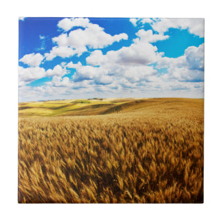 Rolling hills of ripe wheat tile