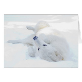 Rolling in the snow greeting card