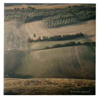 Rolling landscape, Pienza, Tuscany, Italy Tile