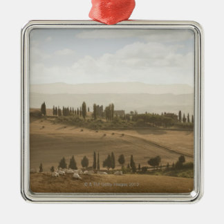 Rolling landscape, Tuscany, Italy Silver-Colored Square Decoration