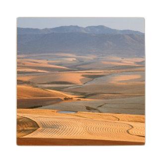 Rolling Wheat Fields. Caledon, Overberg Wood Coaster