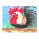 rollo rooster postcard