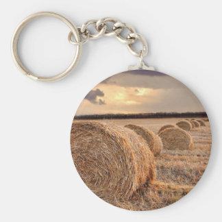 Rolls of Hay Key Chain