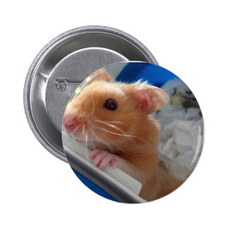 Rolo the hamster button badge