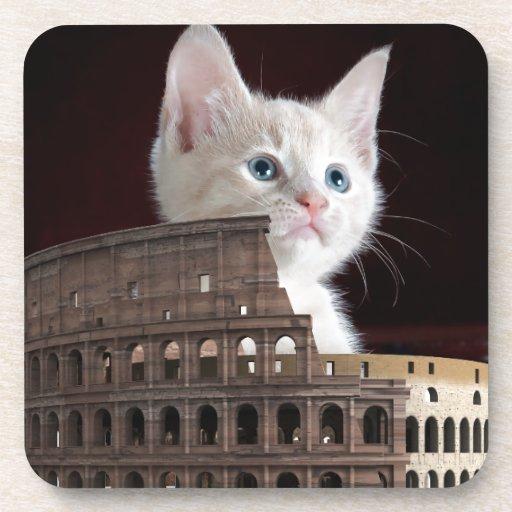 roman kitty Beverage Coaster