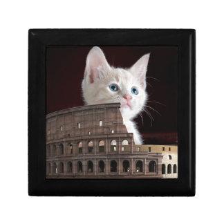 roman kitty gift box