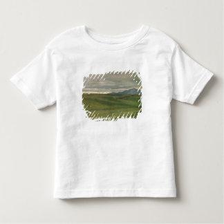 Roman Landscape Toddler T-Shirt