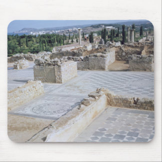 Roman ruins of the port of Emporion Mouse Mat