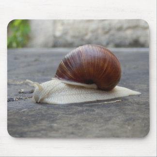 Roman Snail Mouse Mat