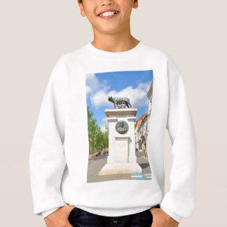 Roman statue sweatshirt