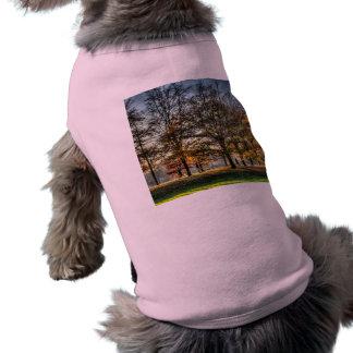 Romance in Greenwich Park Shirt