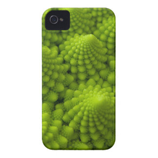 Romanesco Broccoli Fractal Vegetable iPhone 4 Cover